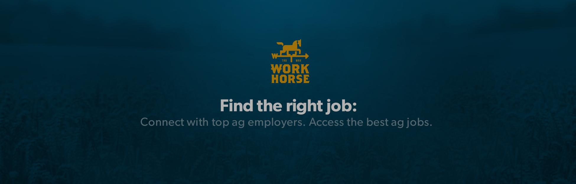 Work Horse - GiantGoat